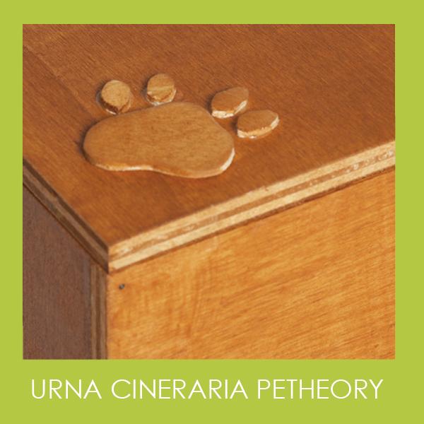 Urna cineraria petheory